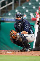 Charlotte Stone Crabs catcher Brett Sullivan (8) looks into the dugout during a game against the Palm Beach Cardinals on July 22, 2017 at Roger Dean Stadium in Palm Beach, Florida.  Charlotte defeated Palm Beach 5-2.  (Mike Janes/Four Seam Images)