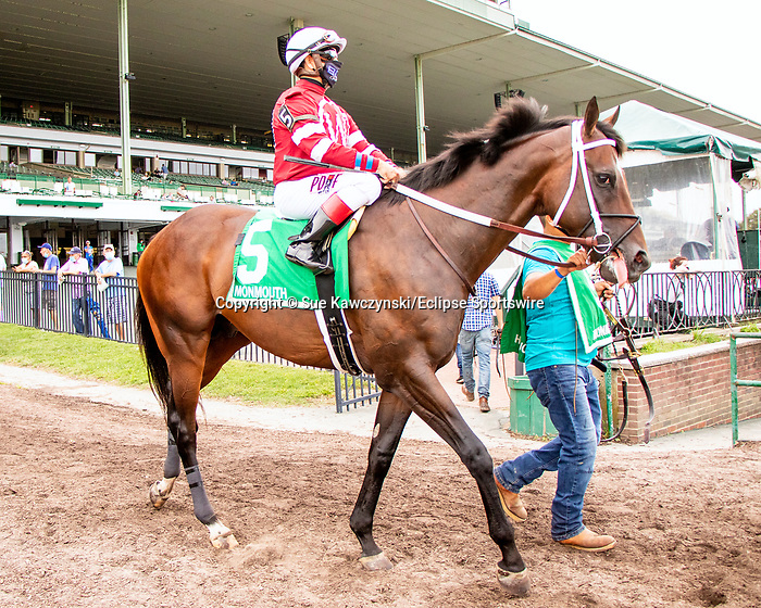 AUG 15, 2020 : Pneumatic with Joe Bravo aboard, wins the Pegasus Stakes, earning 20 points for the Kentucky Derby, at Monmouth Park, Elmont, NY.  Sue Kawczynski/Eclipse Sportswire/CSM