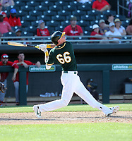 Logan Davidson - Oakland Athletics 2020 spring training (Bill Mitchell)
