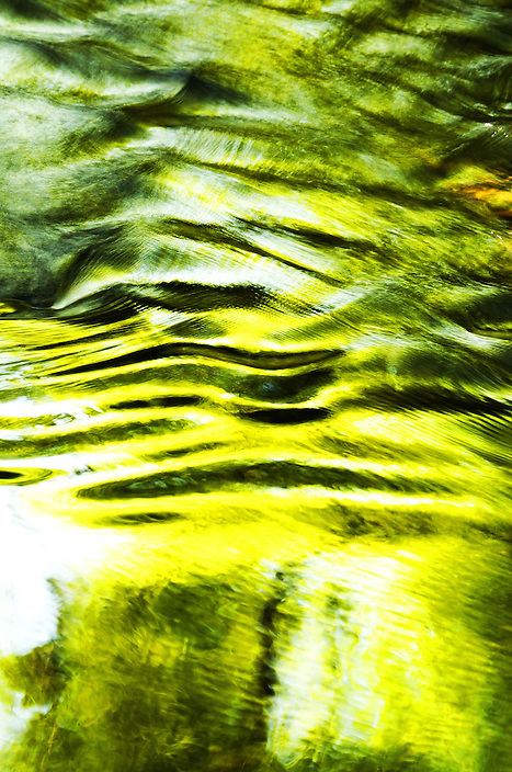 The reflection of shoreline vegetation is dragged downstream by a mountain river.