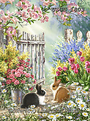 Dona Gelsinger, REALISTIC ANIMALS, REALISTISCHE TIERE, ANIMALES REALISTICOS, paintings+++++,USGE1803,#a#, EVERYDAY,rabbits,sympathy