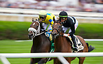 August 28, 2021: Tamahere (Fr)ridden by jockey Irad Ortiz Jr.during the running of the Grade 2 Ballston Spa Stakes on the turf at Saratoga Race Course in Saratoga Springs, N.Y. on August 28th, 2021. Scott Serio/Eclipse Sportswire/CSM