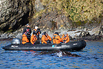 NG Orion Guests Observing Wildlife In Elsehul Bay