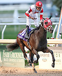 February 21, 2015:International Star with Miguel Mena up wins the Risen Star Stakes at the New Orleans Fairgrounds Risen Star Stakes Day. Steve Dalmado/ESW/CSM