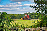 River Road field with Farmall Tractor. September.