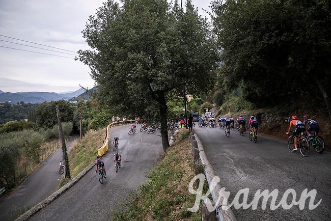 peloton descending. <br /> <br /> 7th La Course by Le Tour de France 2020<br /> 1 day race from Nice to Nice 96km<br /> ©kramon