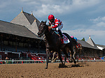 August 8 2020: Serengeti Empress #1, ridden by Luis Saez, wins the Ballerina  on Travers Day at Saratoga Race Course in Saratoga Springs, New York. Rob Simmons/Rob Simmons/Eclipse Sportswire/CSM