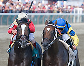 Though it was a nondescript race on an undercard, the battle between Convocation (left) and Glenwood Canyon was a thriller.
