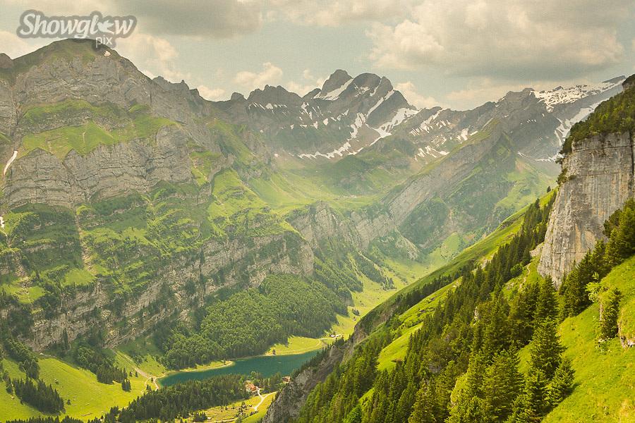 Image Ref: SWISS067<br /> Location: Ebenalp, Switzerland<br /> Date of Shot: 21st June 2017
