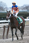 Stay Thirsty, under jockey Ramon Dominguez, wins the Gotham Stakes at Aqueduct Race Track on Saturday, March 5, 2011.  Stay Thirsty is owned by Mike Repole and Repole Stables and trained by Todd Pletcher