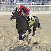 Suburban and Dwyer Stakes at Belmont Park - 07/06/2013