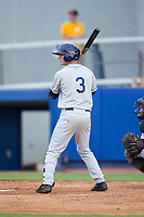 Justin Bridgman (3) of the Princeton Rays at bat against the Danville Braves at American Legion Post 325 Field on June 25, 2017 in Danville, Virginia.  The Braves walked-off the Rays 7-6 in 11 innings.  (Brian Westerholt/Four Seam Images)