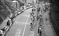 peloton over the Cauberg<br /> <br /> Amstel Gold Race 2014