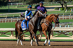 ARCADIA, CA. SEPTEMEBER 29: #3 Vibrance, ridden by Joel Rosario,, in the post parade of the Chandelier Stakes (Grade l) on September 29, 2018, at Santa Anita Park in Arcadia, CA. (Photo by Casey Phillips/Eclipse Sportswire/CSM)