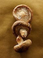 Fresh Shiitake mushrooms shitake raw