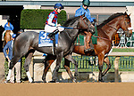 """October 05, 2018 : #13 Restless Rider and jockey Brian Hernandez Jr. win the 67th running of the Darley Alcibiades (Grade 1) """"Win and You're In Breeders' Cup Juvenile Fillies Division"""" for trainer Kenneth McPeek and owner Three Chimneys Farm and Fern Circle Stables at Keeneland Race Coure on October 05, 2018 in Lexington, KY.  Candice Chavez/ESW/CSM"""