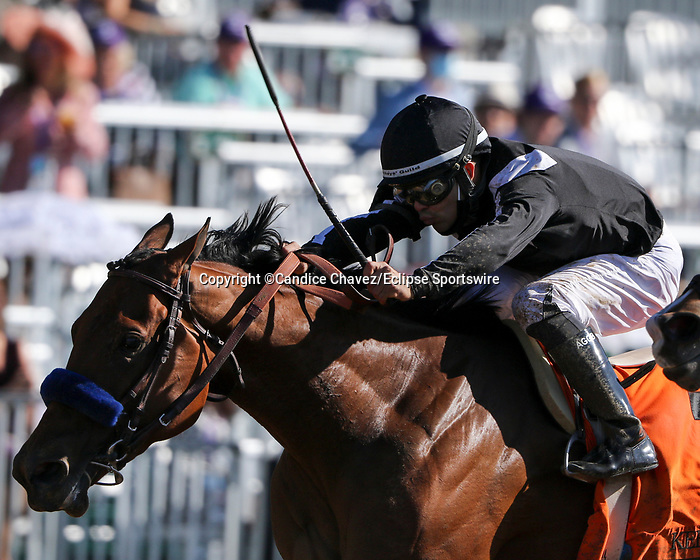 November 7, 2020 : Merneith, ridden by Luis Saez, wins the Qatar Fort Springs Stakes on Breeders' Cup Championship Saturday at Keeneland Race Course in Lexington, Kentucky on November 7, 2020. Candice Chavez/Breeders' Cup/Eclipse Sportswire/CSM