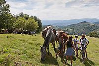 Europe/France/Aquitaine/64/Pyrénées-Atlantiques/Pays-Basque/Env d'Urrugne:  Randonnée équestre sur le Sentier des Contrebandiers - Halte à Venta de Yasola - Massif de la  Rhune juste à la frontière