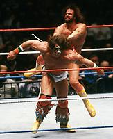 Randy Macho Man Savage Ultimate Warrior 1989                                                                 Photo By John Barrett/PHOTOlink