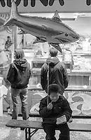 """Carnevale di Vercelli. Un bambino seduto alla panca di un """"baracchino"""" mangia patatine fritte con un palloncino a forma di squalo legato al polso --- Carnival of Vercelli. A boy sitting at the bench of a shack and eating fries with a balloon in the shape of a shark strapped to his wrist"""