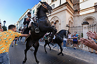 "Spain. Balearic Islands. Minorca (Menorca). Mahon. Rising horse at  ""Fiestas de la Mare de Déu de Gràcia"" during the traditional summer festival. The Menorquín is a breed of horse indigenous to the island and is closely associated with the doma menorquina style of riding. The riders wear black and white and most of their horses (adorned with ribbons and multi-coloured rosettes) are of the highly-considered Menorcan breed. The riders and their horses parade through the streets, and these magnificent and remarkably calm horses rear up on their hind-legs to the delight of the crowd. The most valued quality of Menorquín horse is its suitability for the traditional festivals of Menorca. Horses and riders are at the centre of local fiesta celebrations, in a tradition that may go back to the 14th century and incorporate elements of Christian, pagan and Moorish ritual. Some 150 riders participate in the festival in Mahón. Riders pass through the crowds, executing caracoles and repeatedly performing the bot. The aim of the 'bot' is for the horse to stand on its hind legs while keeping its head and shoulders relaxed and without tension; the more often it is performed and the greater the distance travelled, the greater the applause of the crowd. The elevade, in which the horse beats the air with the front hooves, is also a part of the ritual of the fiesta. Touching the horses is believed to bring good luck. Maó (in Catalan) and Mahón (in Spanish), written in English as Mahon, is a municipality, the capital city of the island of Menorca, and seat of the Island Council of Menorca. The city is located on the eastern coast of the island, which is part of the autonomous community of the Balearic. In Spain, an autonomous community is a first-level political and administrative division, created in accordance with the Spanish constitution of 1978, with the aim of guaranteeing limited autonomy of the nationalities and regions that make up Spain. 7.09.2019 © 2019 Didier Ruef"