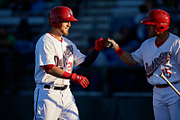 Auburn Doubledays first baseman Matt Skole (25) is congratulated by Kameron Esthay (15) as he returns to the dugout after hitting a home run in the bottom of the first inning during a game against the Connecticut Tigers on August 8, 2017 at Falcon Park in Auburn, New York.  Auburn defeated Connecticut 7-4.  (Mike Janes/Four Seam Images)