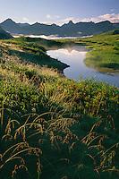 Tundra pond along Park Road<br /> Teklanika River Valley<br /> Denali National Park<br /> Alaska