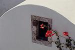A bougainvillea flower grows outside a window on Santorini Island in Greece.