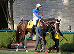 """Octover 03, 2020 : #1 Super Stock and jockey Tyler Gaffalione finish 3rd in the 107th running of The Breeders' Futurity (Grade 1) """"Win and You're In Breeders' Cup Juvenile Division"""" for trainer Steven Asmussen at Keeneland Racecourse in Lexington, KY on October 03, 2020.  Candice Chavez/ESW/CSM"""