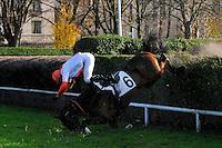 20121125 Cadute da Cavallo