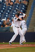Tampa Yankees shortstop Kyle Holder (12) at bat during a game against the Palm Beach Cardinals on July 25, 2017 at George M. Steinbrenner Field in Tampa, Florida.  Tampa defeated Palm beach 7-6.  (Mike Janes/Four Seam Images)