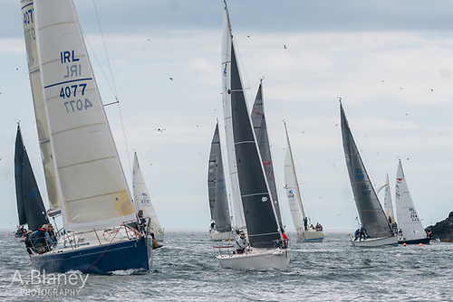 Mixed Howth fleet at the back of the island – classic Lambay Race boat variety on Lambay's north coast, with Stephen Harris's First 40.7 Tiger nearest camera