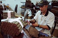 "Iles Bahamas / New Providence et Paradise Island / Nassau: Hotel ""le Graycliff"" ou Enrico Garzaroli fait produire ses cigares ""Graycliff"" - Torcedor roulant les feuilles de tabac à la main //  Bahamas Islands / New Providence and Paradise Island / Nassau: Hotel ""le Graycliff"" where Enrico Garzaroli has his ""Graycliff"" cigars produced - Torcedor rolling tobacco leaves by hand"