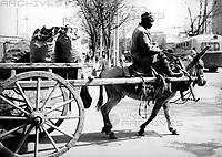 Ein Mann auf seinem Eselskarren in Samarkand in Usbekistan, Sowjetunion 1970er Jahre. A man on his donkey cart in the streets of Samarkand, Uzbekistan, Soviet Union, 1970s.
