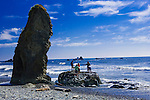 A family explores Fourth Beach, at Kalaloch is one of several signed and short trails to wild and wolly beaches of Olympic National Park in the Kalaloch area.  Olympic National Park. Olympic Peninsula
