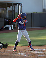 Luis Rodriguez - Los Angeles Dodgers 2021 extended spring training (Bill Mitchell)