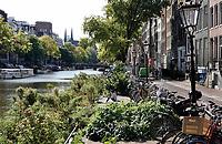 Nederland Amsterdam- 2020.  Vanwege verzakkingen van de kades in Amsterdam, zijn er op sommige plekken extra wanden geplaatst. De kades worden binnenkort vervangen. Bomen en parkeerplekken zijn verwijderd. De stukken tussen kade en wand zijn ingezaaid met bloemen en kruiden die bijen en vlinders aantrekken.    Foto ANP / Hollandse Hoogte / Berlinda van Dam