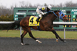 March 14, 2020 : #4 Rogue Too and jockey Rogelio Miranda win the 38th running of The Latonia Stakes (BT) $100,000 for owner Andrew Janszen and trainer Douglas Danner at Turfway Park in Florence, KY on March 14, 2020.  Candice Chavez/ESW/CSM