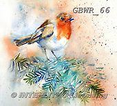 Simon, REALISTIC ANIMALS, REALISTISCHE TIERE, ANIMALES REALISTICOS, paintings+++++LizC_Robin,GBWR66,#a#, EVERYDAY