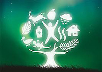 International Year of Forests 2011