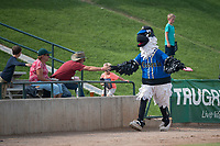 Missoula mascot Ollie Osprey high fives fans before a Pioneer League game against the Orem Owlz at Ogren Park Allegiance Field on August 19, 2018 in Missoula, Montana. The Missoula Osprey defeated the Orem Owlz by a score of 8-0. (Zachary Lucy/Four Seam Images)