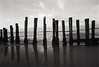 Old pier pilings<br />