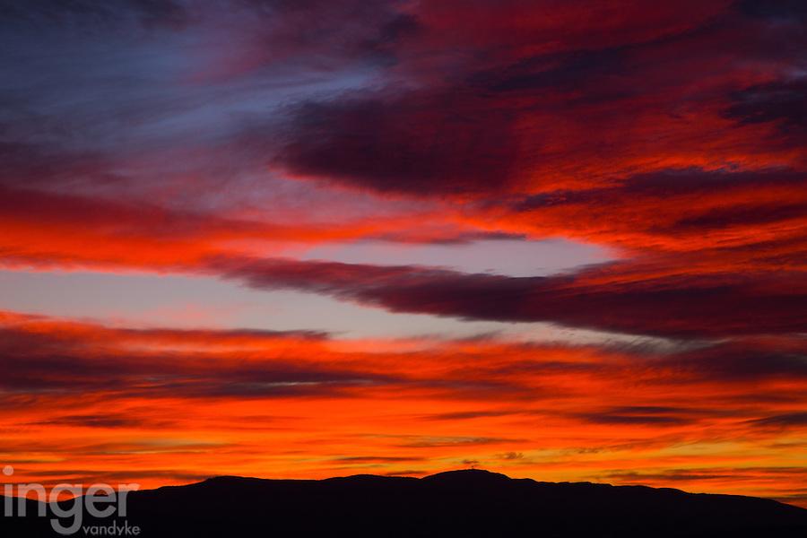 Provencal Sunrise