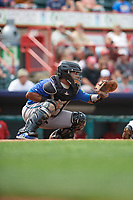 Hartford Yard Goats catcher Jan Vazquez (6) awaits the pitch during a game against the Erie SeaWolves on August 6, 2017 at UPMC Park in Erie, Pennsylvania.  Erie defeated Hartford 9-5.  (Mike Janes/Four Seam Images)