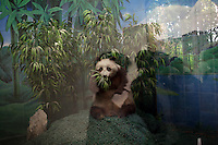 CHINA. Hubei Province. Wuhan. A model of a panda in an enclosure in Wuhan zoo. In many of China's 'second-tier' cities, away from the modern zoos in the megacities of Beijing and Shanghai, hide a plethora of smaller unknown zoos. In these zoos, what can only be described as animal abuse is subtly taking place in the form of deprivation of light, space, sanitation and social contact with other animals. Living in awful conditions, these animals spend there days entertaining tourists who seem oblivious to the animals' plight and squalid existence. 2008.