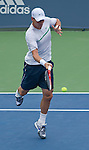 Thomas Berdych (CZE) retires from his match against Novak Djokovic (SRB) at the Western and Southern Financial Group Masters Series in Cincinnati on August 20, 2011.  Djokovic won, 7-5.