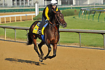 Midnight Interlude on the Churchill Downs track on April 29, 2011.