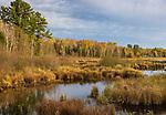Fishtrap Creek in northern Wisconsin.