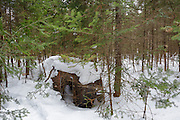 Abandoned Chevrolet in forest of Franconia, New Hampshire USA during the winter months. This is possibly a 1940s Chevrolet 4-door sedan with trunk. Body plate reads style 40-1019 Body T29194