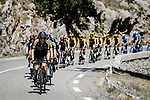 Mitchelton-Scott lead the peloton during Stage 6 of Tour de France 2020, running 191km from Le Teil to Mont Aigoual, France. 3rd September 2020.<br /> Picture: ASO/Pauline Ballet   Cyclefile<br /> All photos usage must carry mandatory copyright credit (© Cyclefile   ASO/Pauline Ballet)